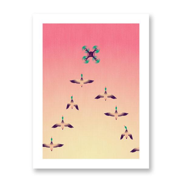 Animalier - A flock of mallards, illustrazione di Davide Saraceno